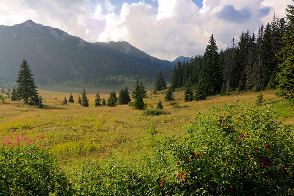 velebit, planina, lika, nacionalni park, park prirode, krš, dolina, lubenovac