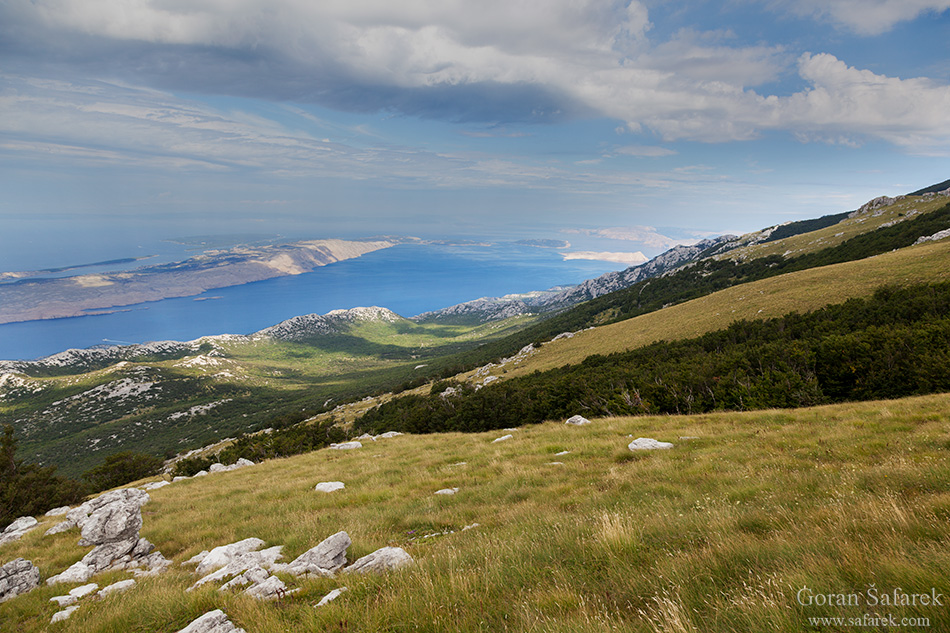 velebit, planine, travnjak