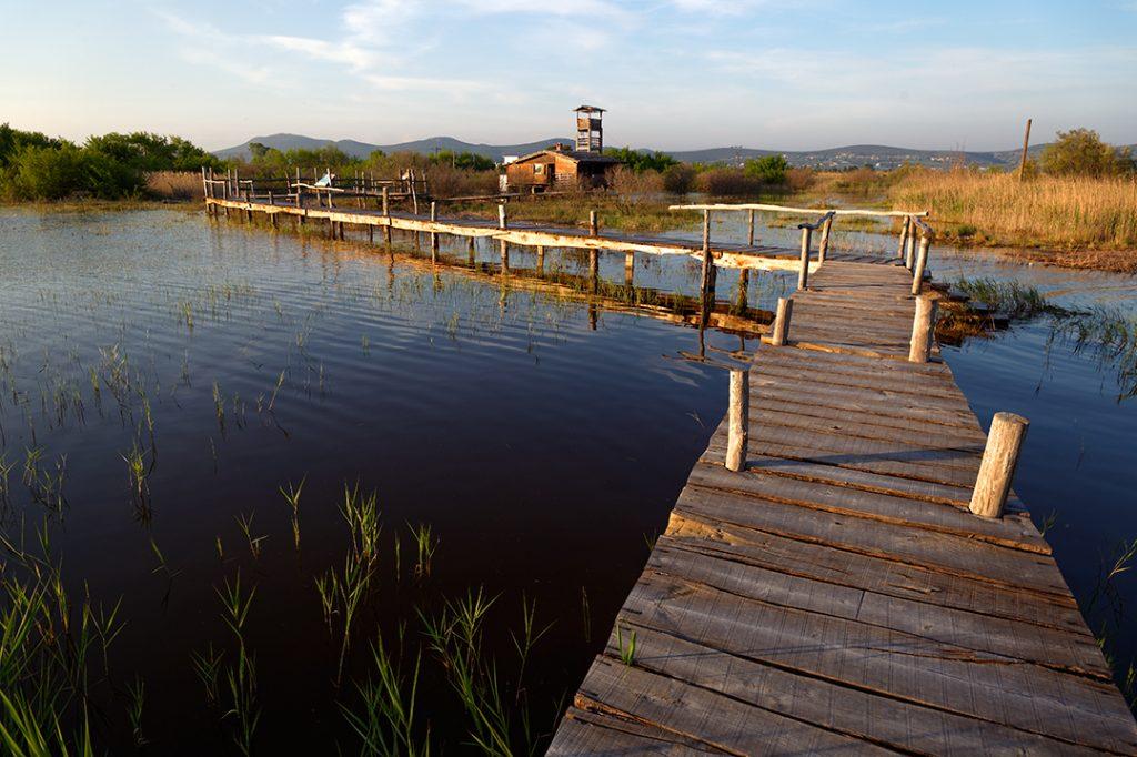 park prirode, vransko jezero, dalmacija, močvara, poplava, staza