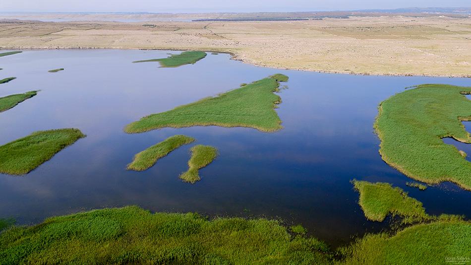 pag, otoci, dalmacija, zadar, Veliko blato, močvara