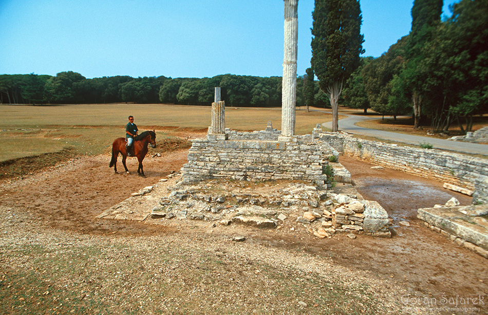 Brijuni, more, Istra, Jadran, otoci,nacionalni park, arheologija, sikopine, rimljani, vila