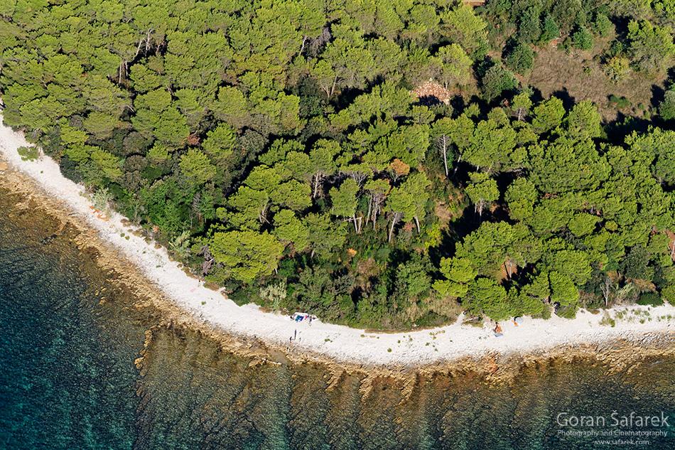 Brijuni, more, Istra, Jadran, otoci,nacionalni park, šuma, obala,