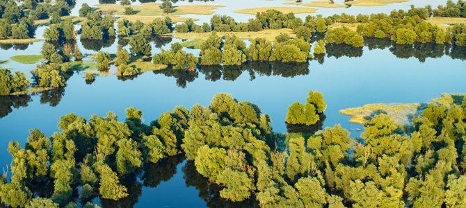 Kopački rit – poplavno područje Dunava i Drave