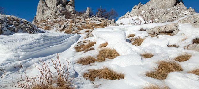 Priroda zimi