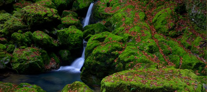 Zeleni vir i Vražji prolaz – divljina vode