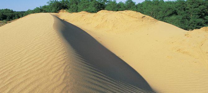 Đurđevački (Podravski) pijesci – Hrvatska Sahara