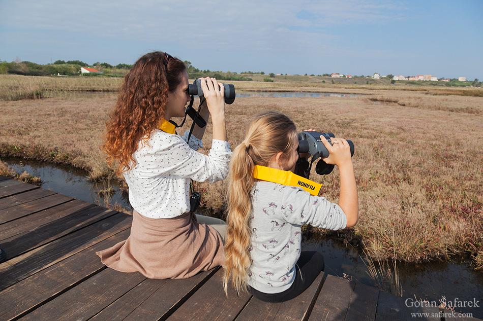 promatranje ptica, birwatching, birding, ptice