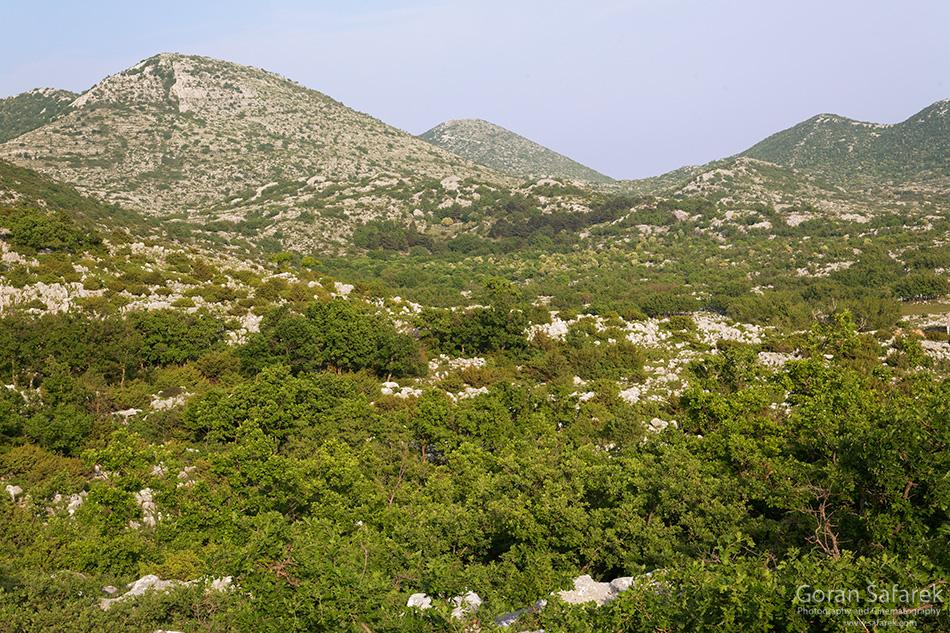 biokovo, park prirode, makarska, planine, šuma