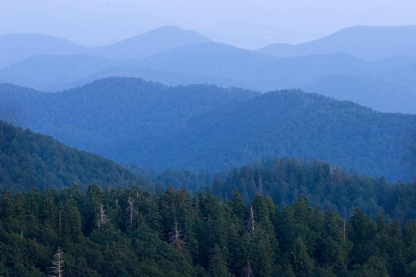 gorski kotar, šuma, planine, hrvatska, oblaci, priroda, kapela, bijele stijene