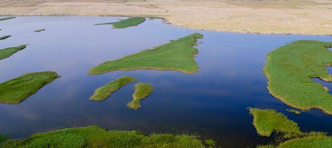 Muljevita i pješčana područja sjeverne Dalmacije