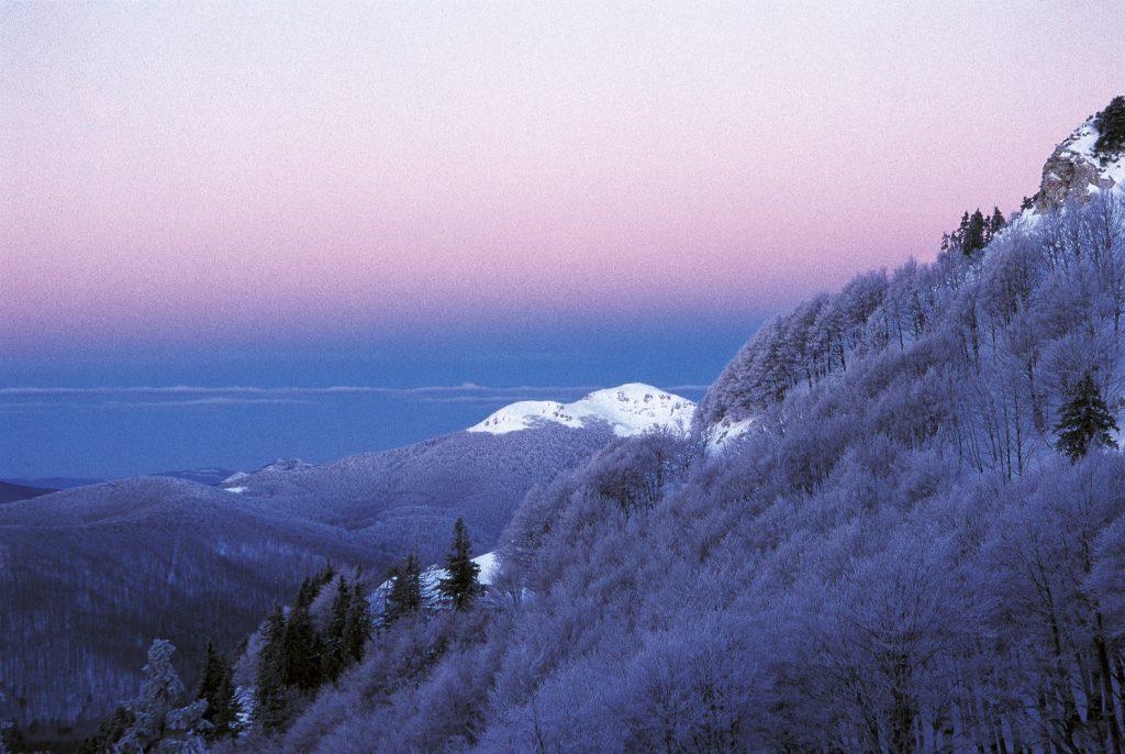 gorski kotar, šuma, planine, hrvatska, oblaci, priroda, risnjak, zima