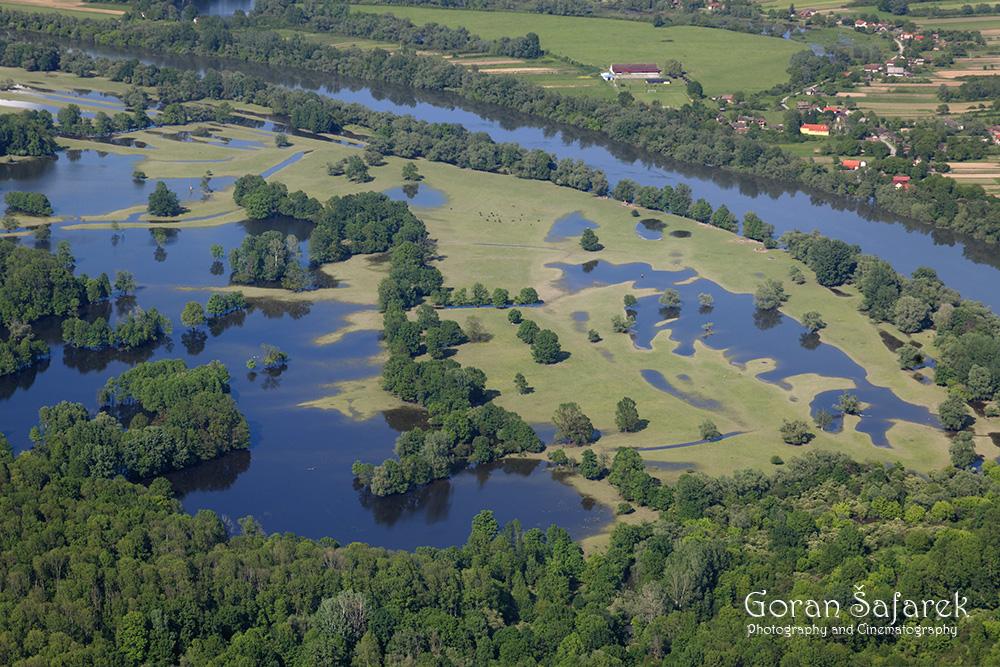 poplave, poplavna područja, lonjsko polje