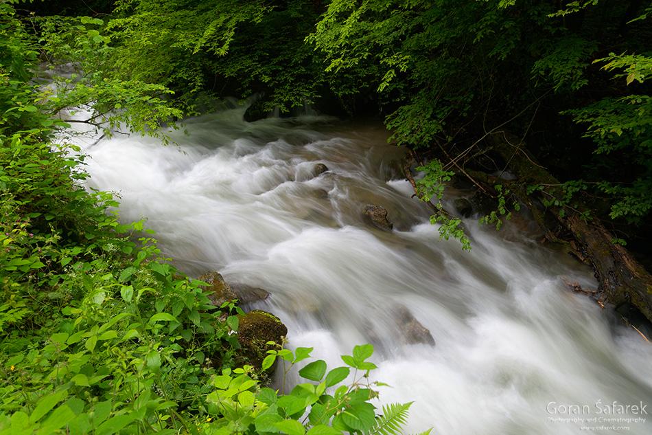 planine, priroda, Hrvatska, Papuk, potok, rijeke