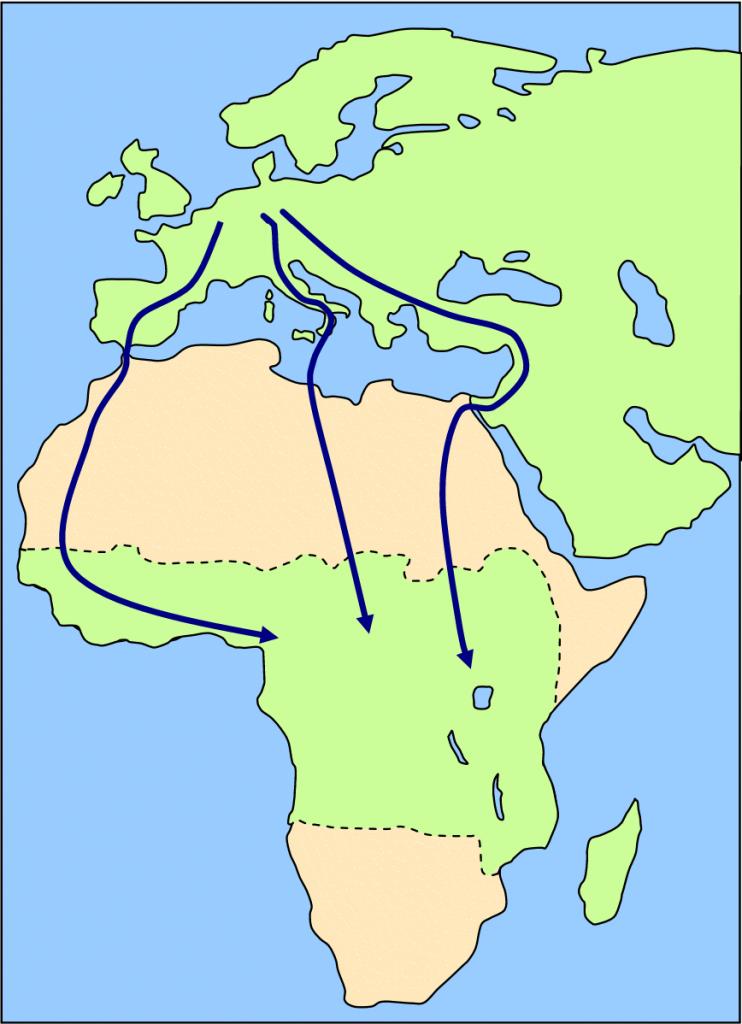 seoba, ptice, migracije, ornitologija