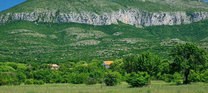 Dalmatinske krške planine
