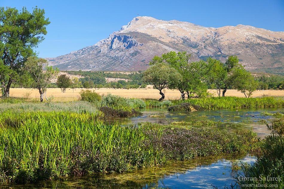 fotografija prirode, cetina, rijeka, dinara