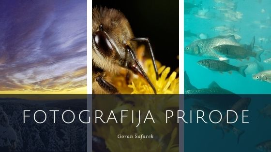 fotografija prirode